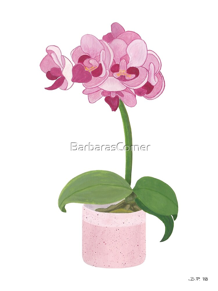 Pink Mini Orchid by BarbarasCorner