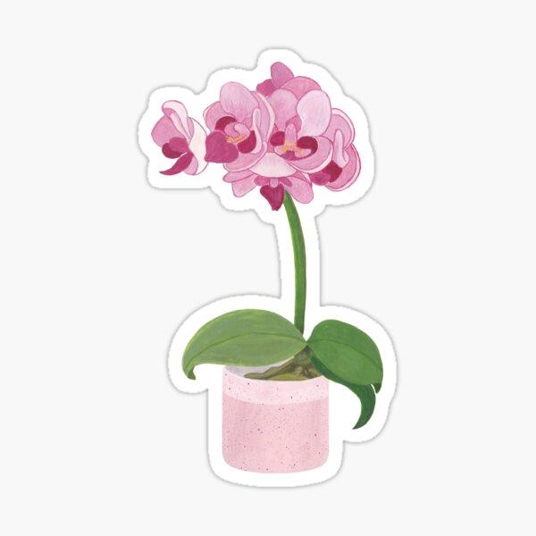 Pink Mini Orchid Sticker