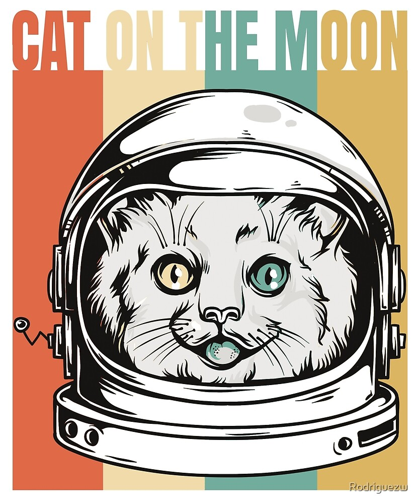 CAT ON THE MOON by Rodriguezw