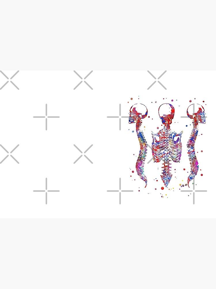 Human brain, watercolor brain, brain print, brain and spinal cord, spinal cord, spinal cord watercolor, Medical art, Rib cage by Rosaliartbook