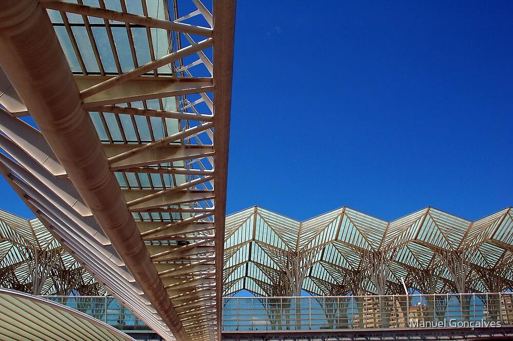 Oriente Station by Manuel Gonçalves