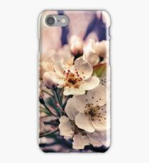 Blossoms at Dusk  iPhone Case/Skin