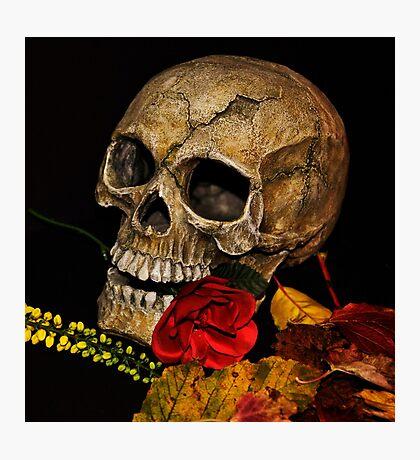 Happy halloween. Photographic Print