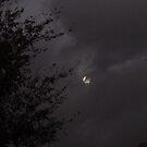 Spooky Full Moon by down23
