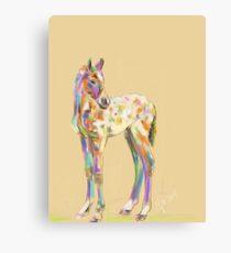 Foal paint Canvas Print