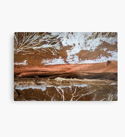 The wood draws trees - Reflecting the Nature it was Metal Print