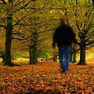 Autumn Walk by Martin Griffett