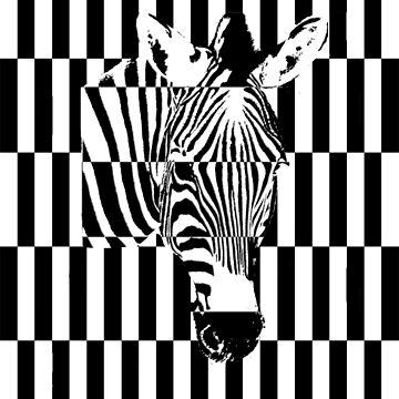 Zebra Crossing by Studio-CFNW11