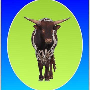 Longhorn bull calf by cuprum