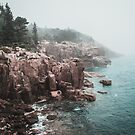 Acadia National Park Atlantic Ocean by TheWaywardVixen