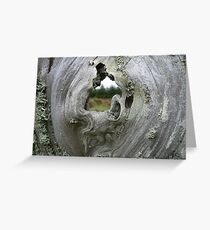 Passage, Cape Blanco, Oregon Greeting Card