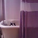 Linus takes a bath by MandieM