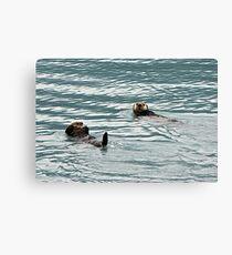 Rub-a-dub-dub...two otters in a tub? Canvas Print
