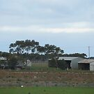 Tarneit Paddock and Sheds by Joan Wild