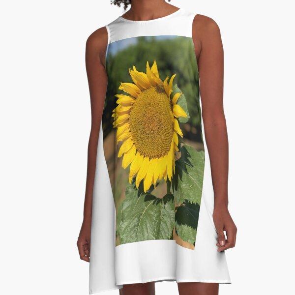Sunflower Basking in the Sun A-Line Dress