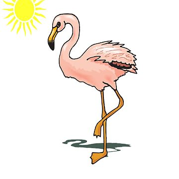 Funny Flamingo - that's it I'm putting my foot down by Discofunkster