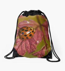 WHEN WINTER COMES... Drawstring Bag