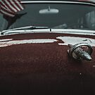 Rusty Classic Car Hood Ornament  by TheWaywardVixen
