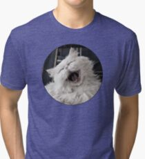 They say that NOTHING beats a good belly laugh!  Tri-blend T-Shirt