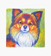 Colorful Long Haired Chihuahua Dog Scarf