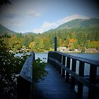 Rustic View of Lake Cowichan, Vancouver Island, British Columbia, Canada by Edward A. Lentz