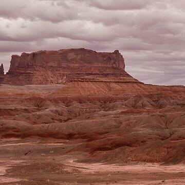 Arizona Red Clay Painted Desert Panoramic View by mrbo