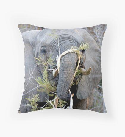 Elephant Fine Dining Throw Pillow