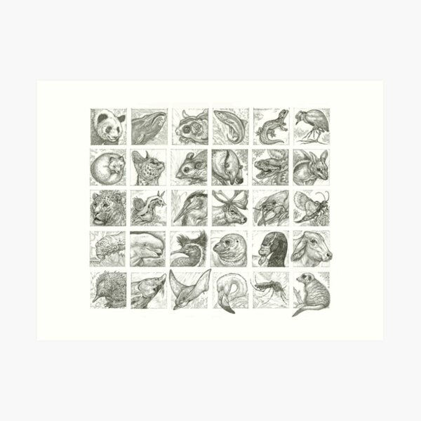 30 Animals Art Print