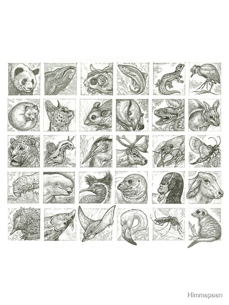 30 Animals by Himmapaan