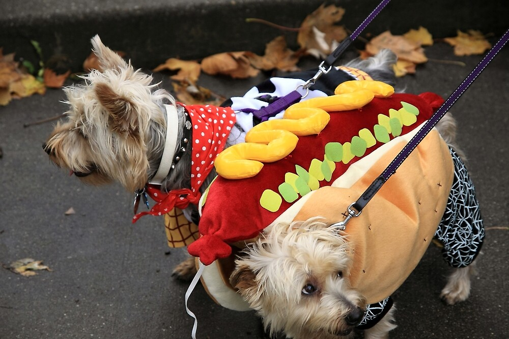 Holloween bark at the park ! by pmarella