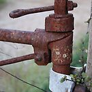Rusty Gate Hinge by Sprinkla
