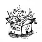 Fragile Contents by fayeemily