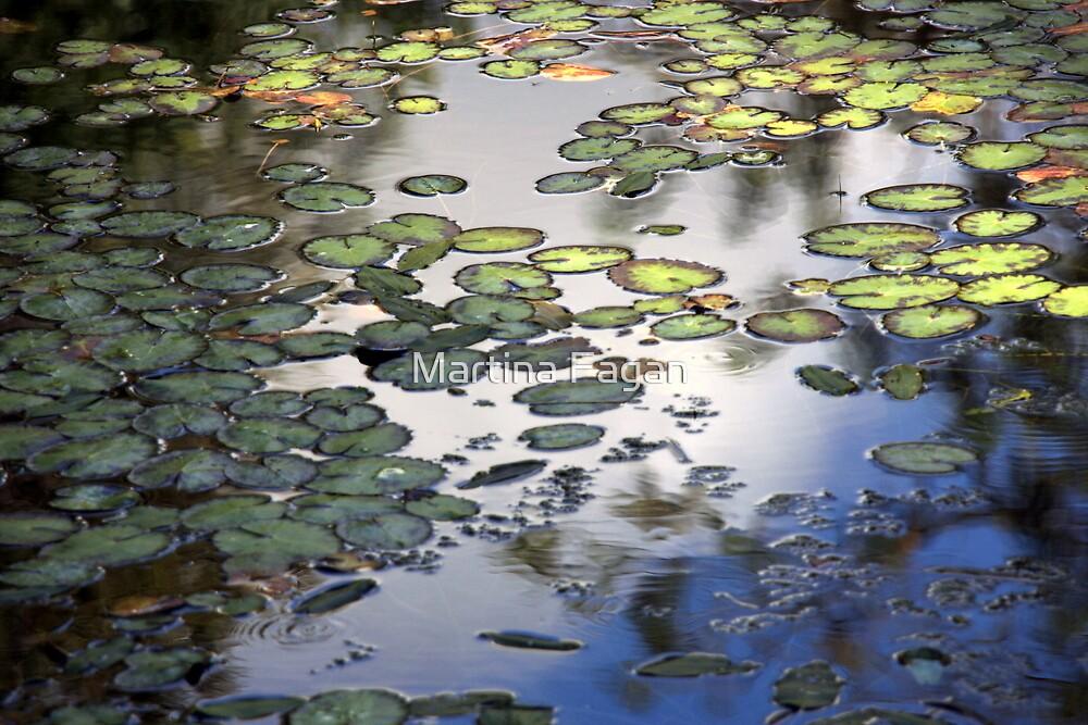 Lily Pad Pond by Martina Fagan