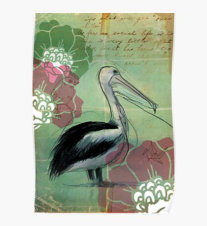 White Pelican -Phillip Island, Vic Poster
