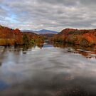 The James River by Jane Best