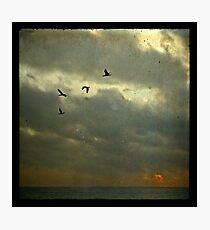 Dark sunrise Photographic Print