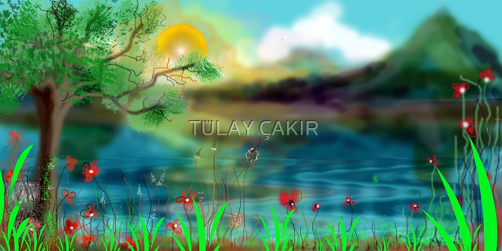 seaside by tulay cakir