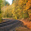 Tracks of the Train by Bob Hortman