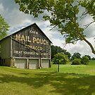 Mail Pouch Barn - Dalton, Ohio by Bob  Perkoski