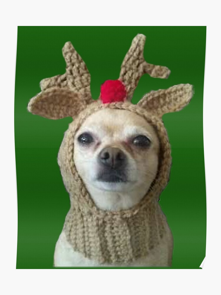 Small Dog Christmas Reindeer Hat Doggy Reindeer Chihuahua Santas