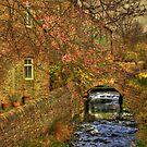 Babbling Brook in Springtime  by Irene  Burdell