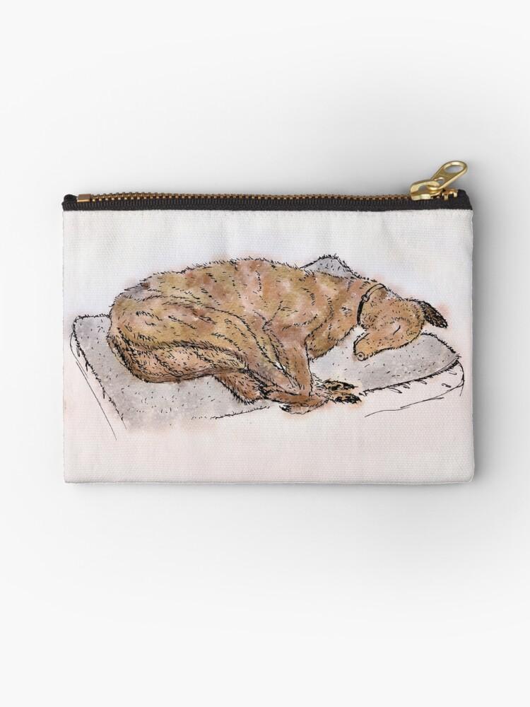 Study of a sleeping greyhound by Andre Gascoigne