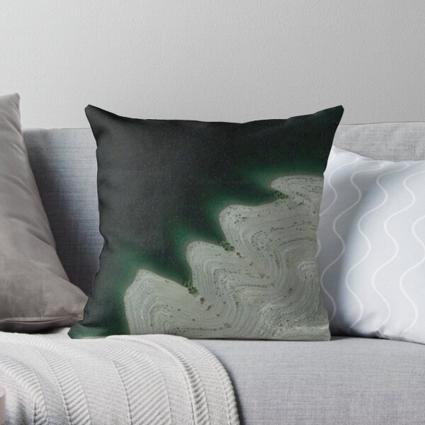 Google Maps - New Perspective Throw Pillow