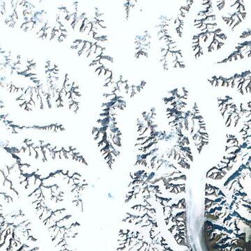 Google Maps - Neue Perspektive 7 von yussername