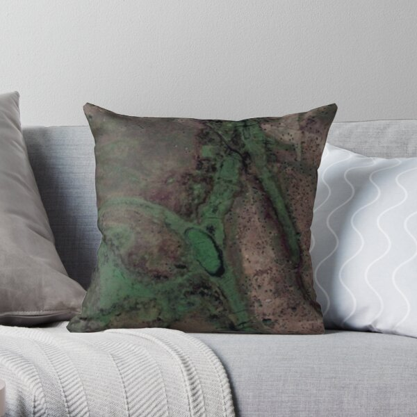 Google Maps - New perspective 9 Throw Pillow