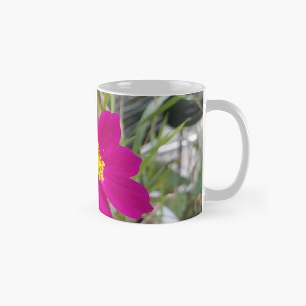 Flowers #flowers #nature #flower #leaf #summer #outdoors #grass #garden #environment #bright #season #petal #tree #horizontal #greencolor #colorimage #plant #nopeople #closeup #colors #day #fragile Classic Mug