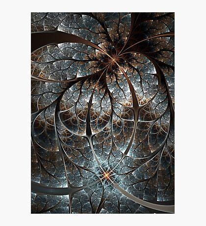 Crystaline Photographic Print