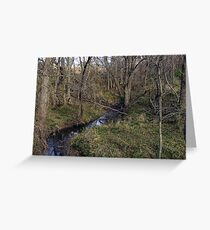 Our Creek Greeting Card