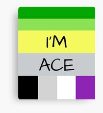 AROMANTIC FLAG ASEXUAL FLAG I'M ACE ASEXUAL T-SHIRT Canvas Print