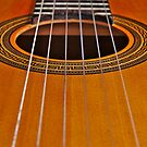 Classic Guitar Strings by AngeloDeVal